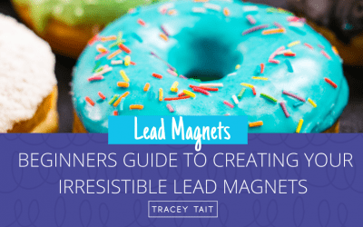 Beginners guide to creating irresistible lead magnets